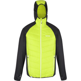 Regatta Andreson V Hybrid Jacket Men lime punch/ash